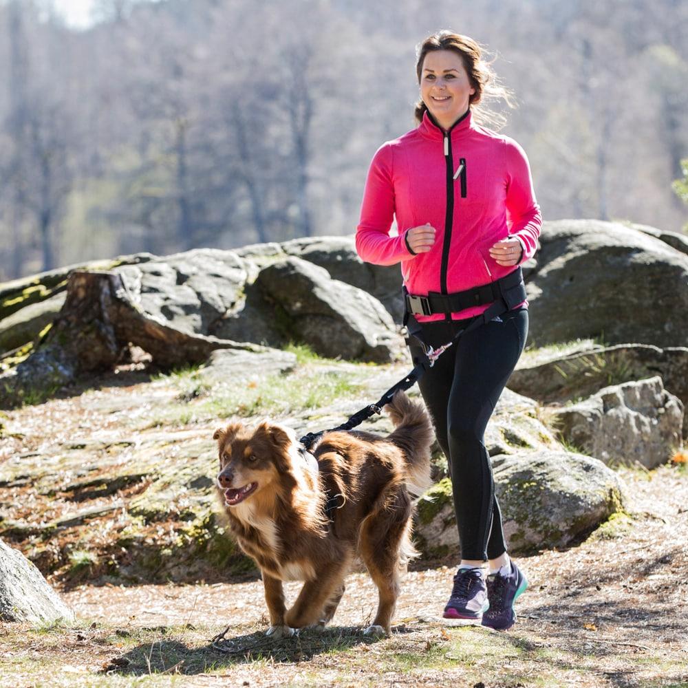 Juoksuvyö koiran taluttimelle   Showmaster®