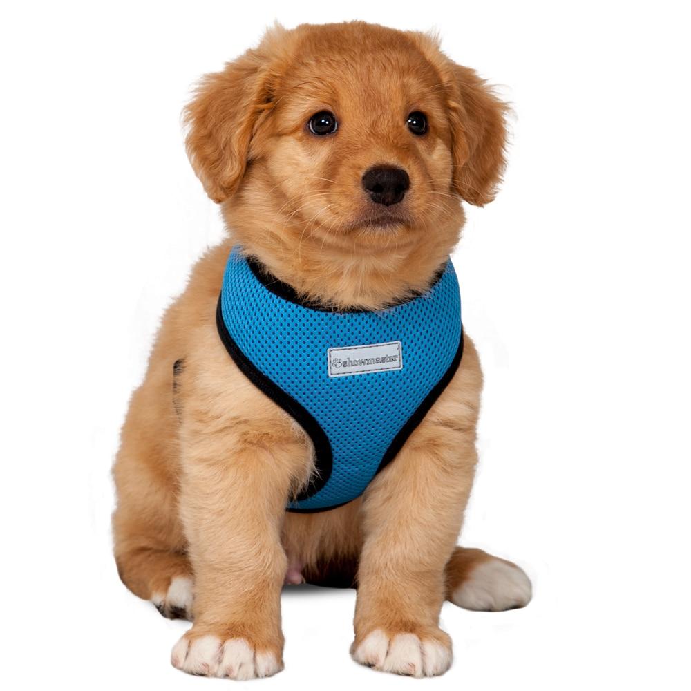 Valjaat  Puppy Showmaster®