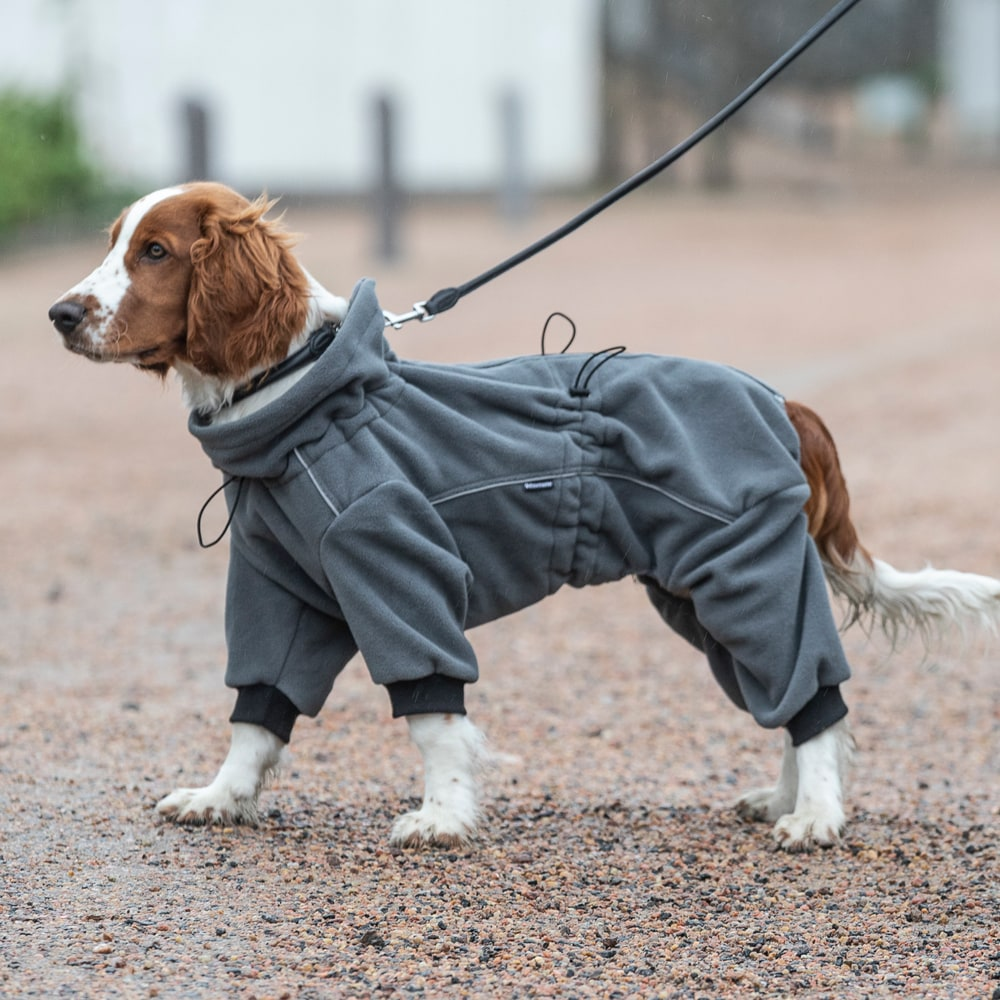 Koiran haalari Fleece Buzz Showmaster®