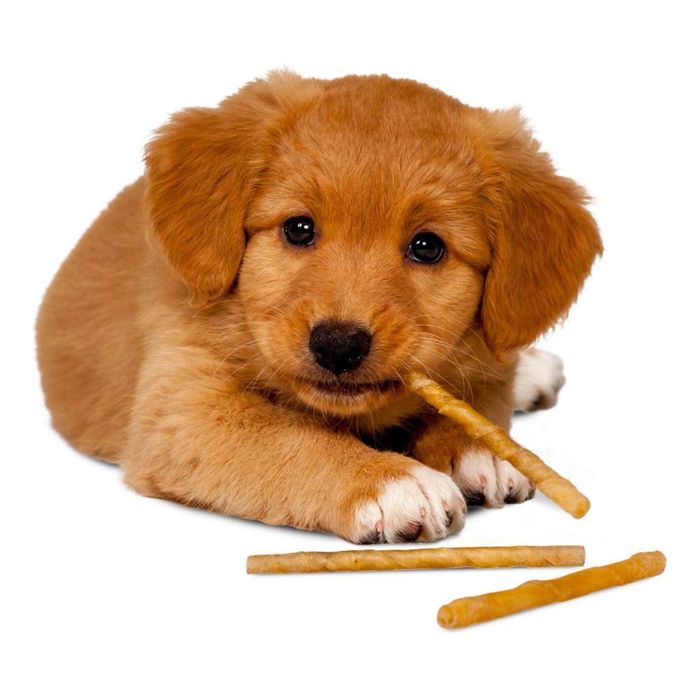 Koiranpuruluu 50 kpl. Twisted stick Treateaters
