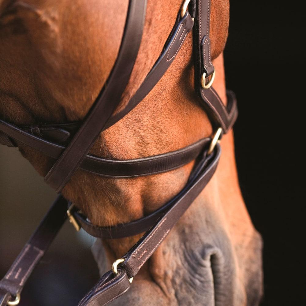 Suitset  Micklem Multibridle Horseware®