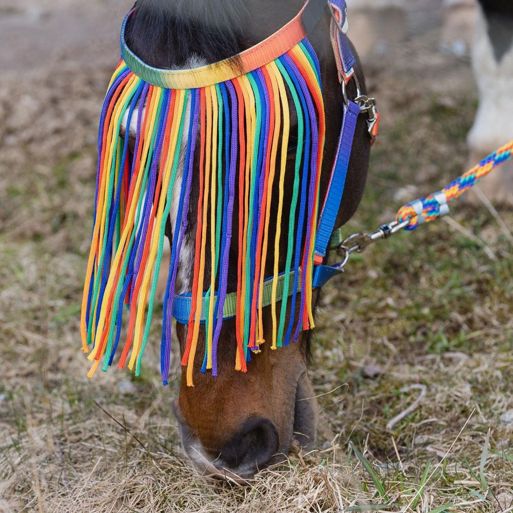 Kärpäsotsapanta  Rainbow Fairfield®