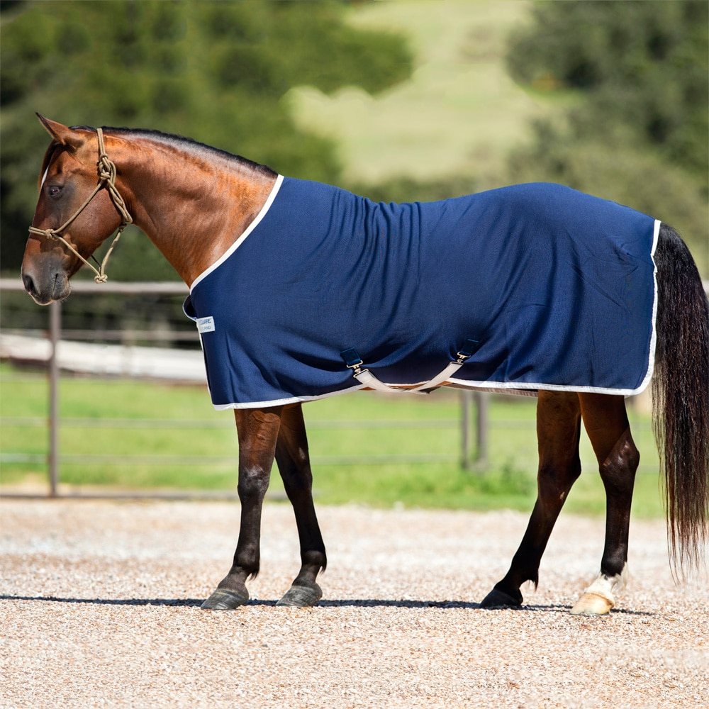 Talliloimi  Amigo Jersey Cooler Horseware®