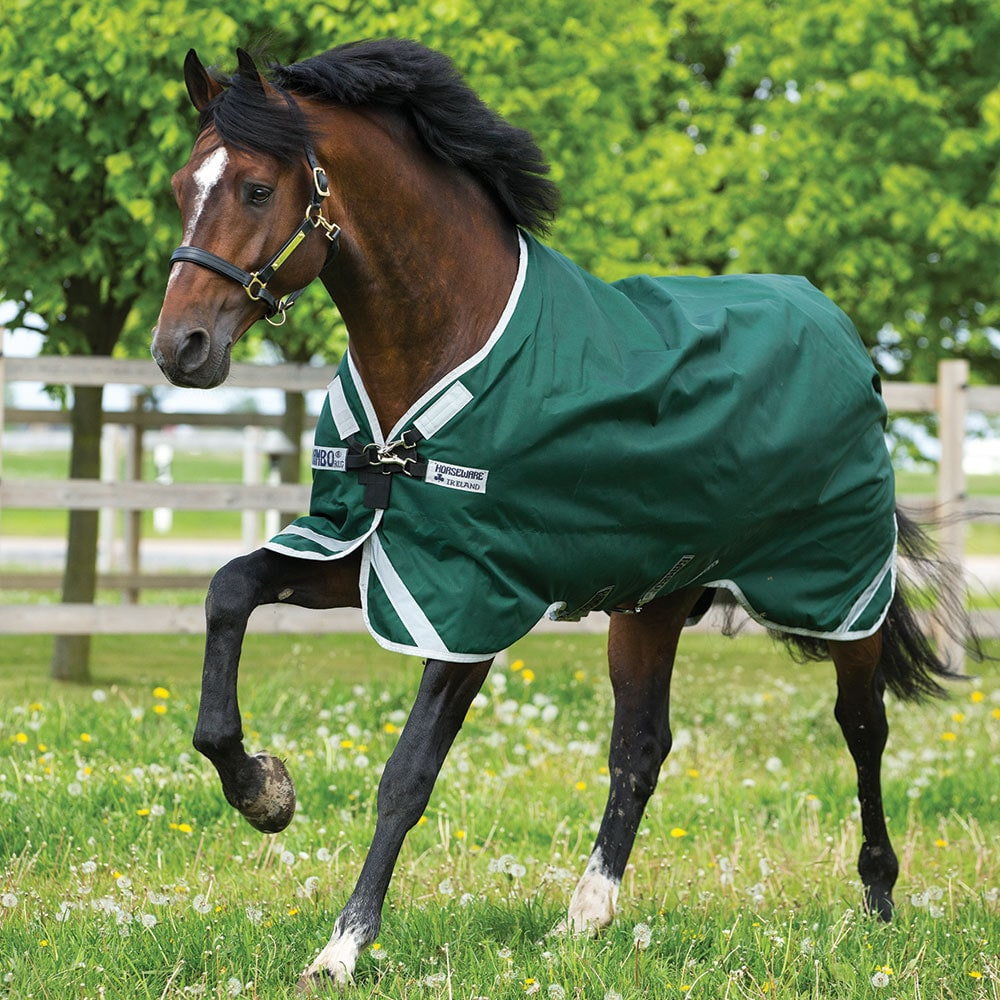 Sadeloimi  Rambo Original with leg arches Lite Horseware®