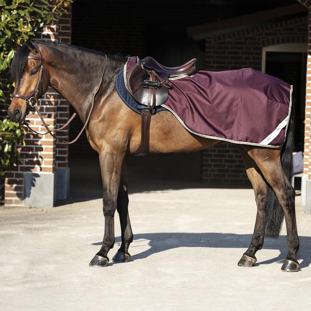 Ratsastusloimi  Amigo Competition Sheet Horseware®