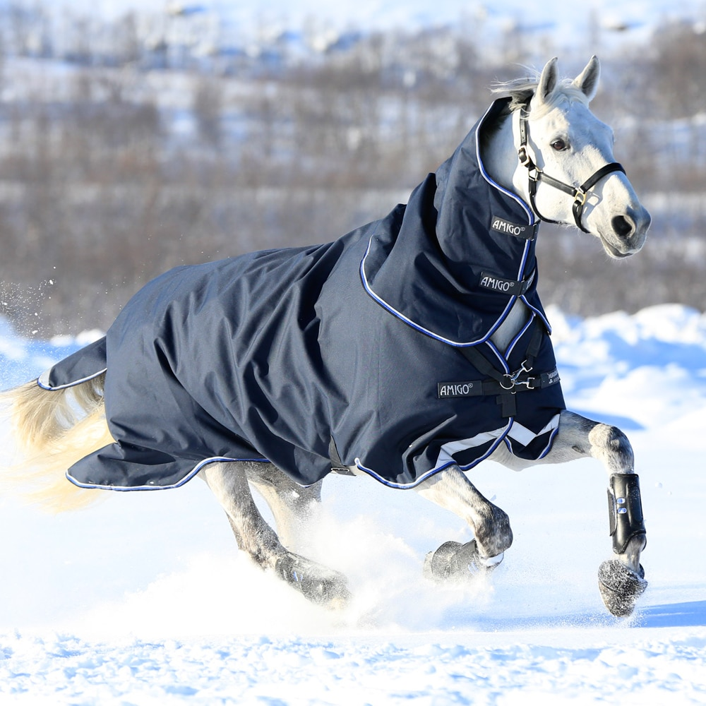 Talviloimi  Amigo® Bravo Plus Heavy 400 Horseware®