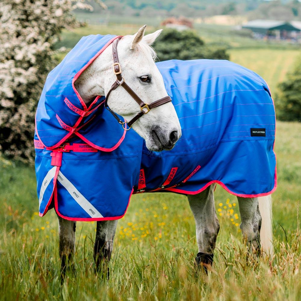 Talviloimi  Amigo Bravo Reflectech Plus 250 Horseware®