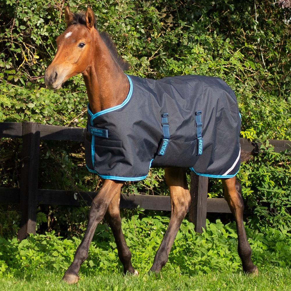 Varsaloimi  Amigo Foal Rug Horseware®